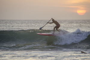 Paddle Surfer Sunset 22 4 115-5580